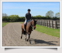 Canter Track